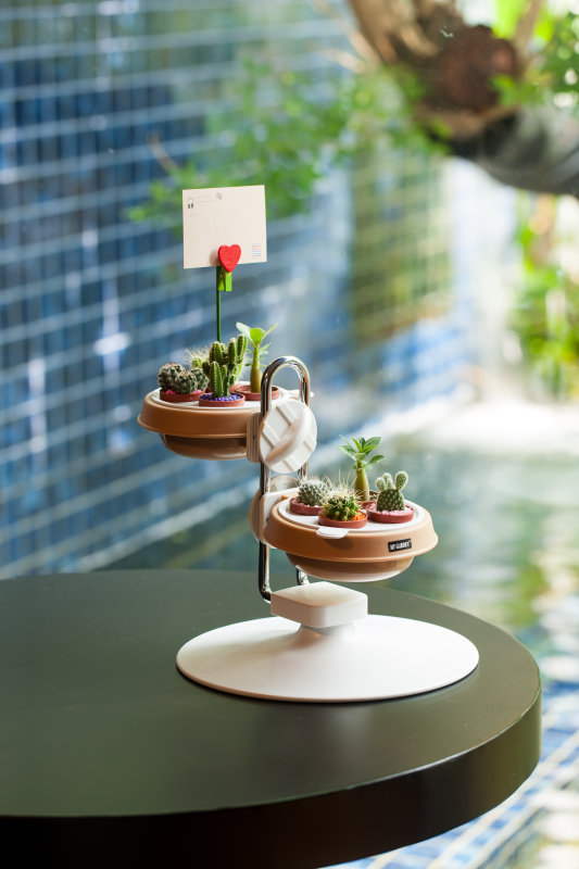 dy-604-adjustable-multi-succulent-mini-pot-holder-short-3.jpg
